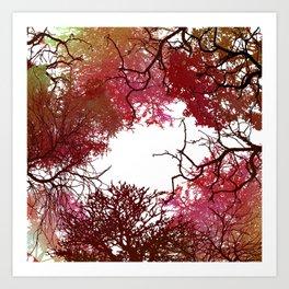 Autumn Treetop Art Print