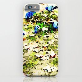 Roma: pigeons peck on the ground between grass and dry leaves iPhone Case