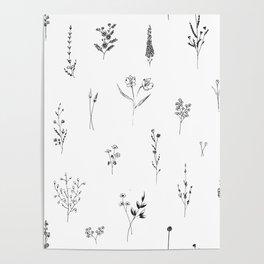 Wildflowers BIG Poster