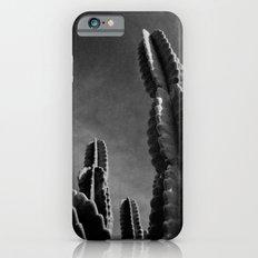 Cactus IV iPhone 6s Slim Case