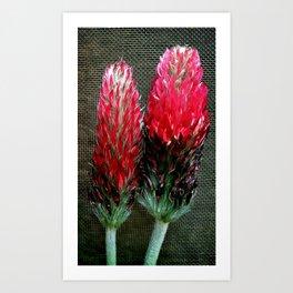 tow field flowers Art Print