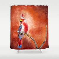 cardinal Shower Curtains featuring cardinal by HaMaD ArT