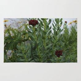 Flower against a white stream. Rug