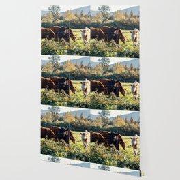 Farm Animals Wallpaper