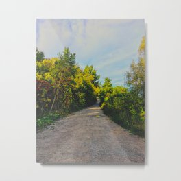 The path through the forest Metal Print