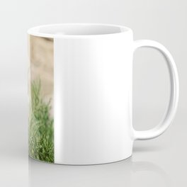 Mr Brown Bear Coffee Mug