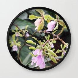 Epicyclia Mabel Kanda Flowers Wall Clock
