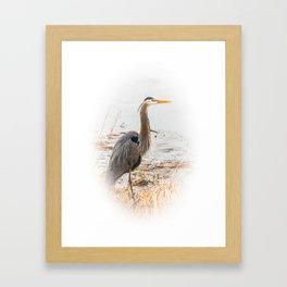 April Blue Heron Framed Art Print