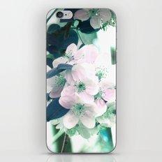 Rêveries iPhone & iPod Skin