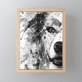 Australian Shepherd Dog Half Face Portrait Framed Mini Art Print