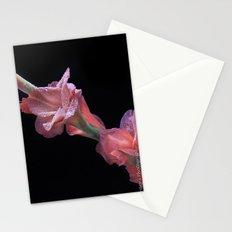 Gladioli  Stationery Cards