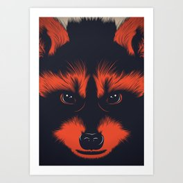 raccoon Art Print