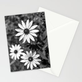 Three Gloriosa daisies B&W Stationery Cards
