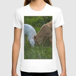 Sibling Rivalry T-shirt