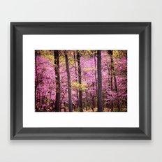 Spring Trees In Bloom Framed Art Print