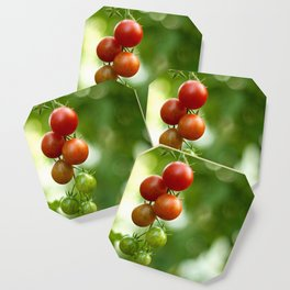 Tomatoes Coaster