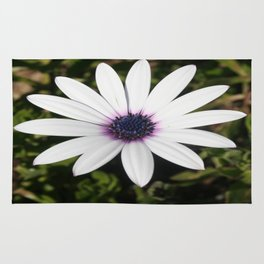 White African Daisy Rug