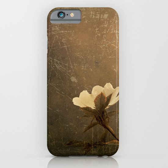 Wild Old Rose iPhone & iPod Case