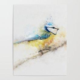 Yellow blue tit watercolour painting watercolour minimalism artsy illustration Poster