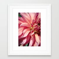 dahlia Framed Art Prints featuring Dahlia  by A Wandering Soul