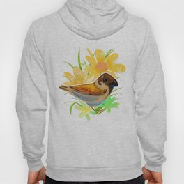 Daisy sparrow Hoody