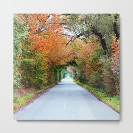 Autumn tunnel Metal Print