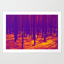 Magic forest Art Print