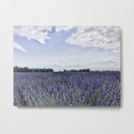 Lavender Field | Vintage French Wildflowers Botanical Meadow Landscape Photograph Purple Tones Metal Print