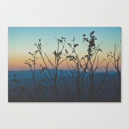 Blue Ridge Mountain Sunset (Asheville, North Carolina) Canvas Print