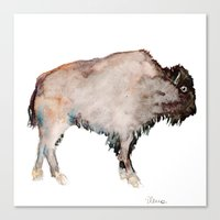 buffalo Canvas Prints featuring Buffalo by Elena Sandovici