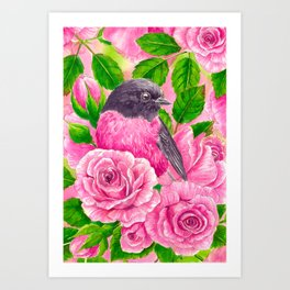 Pink Robin and roses Art Print