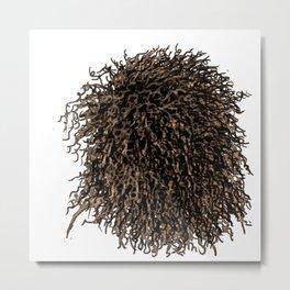 Messy dry curly hair 3 Metal Print