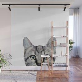 Cat, American Short hair, illustration original painting print Wall Mural