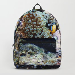 Fish in Sea Anemone Backpack