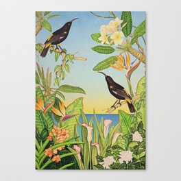 Hawaiian Mamo Canvas Print