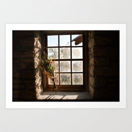 Barn Window and Flowers Art Print