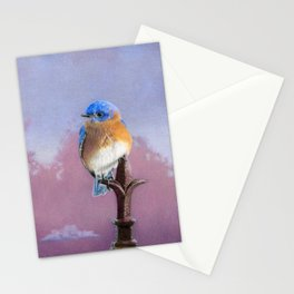 Backyard Bluebird Stationery Cards