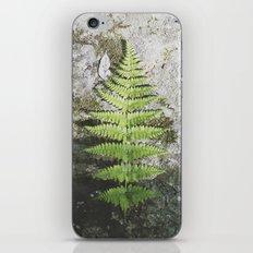 Specimen iPhone & iPod Skin