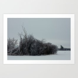 2013 Ice Storm 2 Art Print