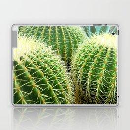 Prickly Bunch Laptop & iPad Skin
