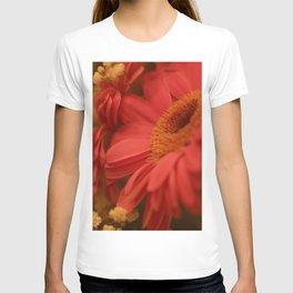 Flower Beam T-shirt