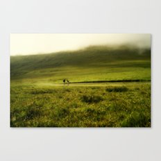 Sheep in the mist Canvas Print