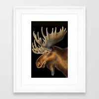 moose Framed Art Prints featuring Moose by Tim Jeffs Art