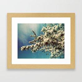 Snowy-leafed tree Framed Art Print