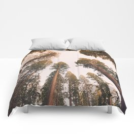 Sequoia Sunset Comforters