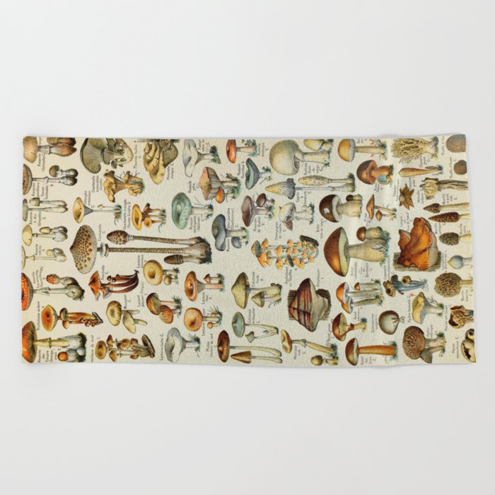 Mushrooms Vintage Scientific Illustration French Language Encyclopedia Lithographs Educational Beach Towel