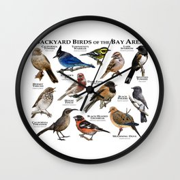 Backyard Bird of the Bay Area Wall Clock