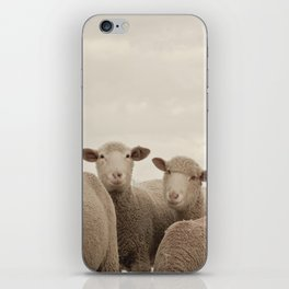 Smiling Sheep  iPhone Skin