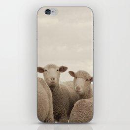 Smiling Sheep  iPhone Skin