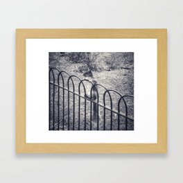 The Lonely Squirrel Framed Art Print